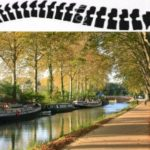 La chiropractie à Toulouse:  essor d'une profession