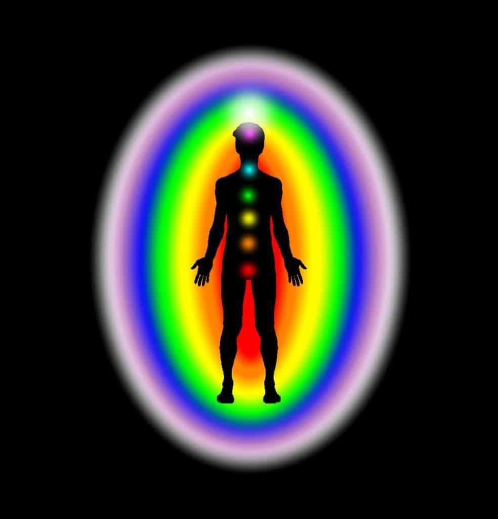 bio-magnétisme du corps