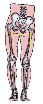posturologie et chiropraxie