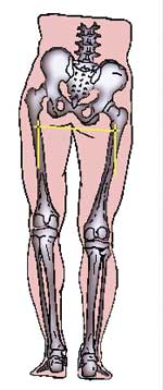 bascule du bassin et jambes